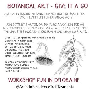 Artist in Residence Trail Tasmania Workshop Botanical Art