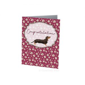 Sausage Dog Congratulations card in red for dachshund lovers by Creatively Belle