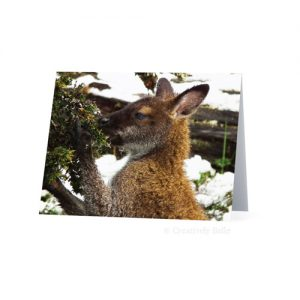 Cradle Mountain Tasmanian Wallaby Kangaroo Greeting Card Stationery by Creatively Belle