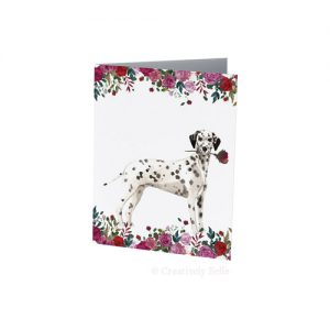 Dalmatian with roses in red, pink and white