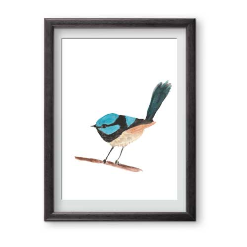 Charming watercolour Superb Blue Wren print is ready for framing in A5 or A4 format