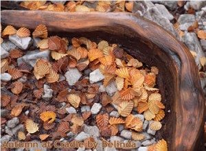 Autumn colours at Cradle Mountain